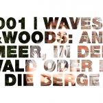 Waves & Woods Magazin – Interview mit Lars Jacobsen